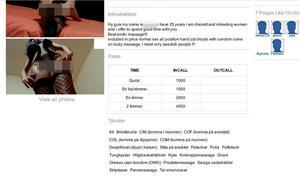 Janinas prislista och förteckningen på de sexuella tjänsterna hon säljer. Bild: Från polisens förundersökning