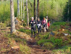 Lördagen 12 maj. Många backar på Knivstigen.Foto: Jan-Olof Montelius
