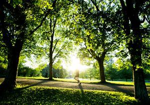 Sommarhettan slog nya rekord i Europa, skriver debattförfattaren.