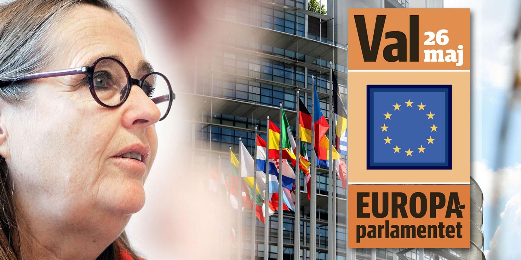Hon slåss mot auktoritära krafter – följ Sveriges näst mest inflytelserika EU-politiker i maktens korridorer