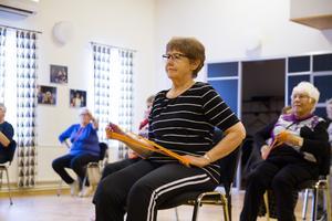 Övningarna gjordes stående, sittandes och med gummiband. Fokus ligger på balans och rörlighet.