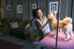 Isabella vill inte ha ägaren med när hon klipper då det både tar längre tid och hunden oftast blir oroligare.