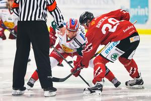 Daniel Ljunggren och Vita Hästens István Bartalis i tekningscirkeln. Foto: Josefine Loftenius/Bildbyrån