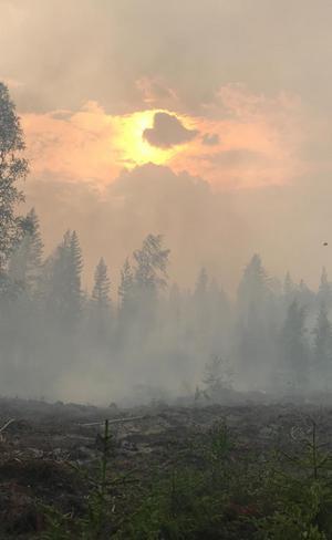 Både eld och rök har lagt sig tung över de brandhärjade områdena kring Ängra och Kårböle. Foto: Kurt Holm/Almunge brandstation