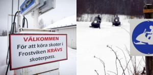 Bilden är ett montage av arkivbilder. Foto: Anders Lundin/Lasse Halvarsson.