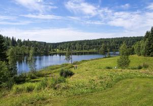 Den soldränkta sydvästsluttningen vid Kroksjön.