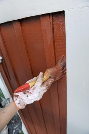 En husrenovering med pensel och färg förstörde skribentens image. Foto: Janerik Henriksson/TT