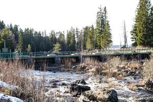 Nedströms dammen i Sindra förgrenade sig Harmångersån innan regleringen och den biotopen är viktig att återskapa anser konsulten.