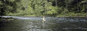 Flugfiskare är beredda att betala mycket för sin hobby.