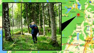 Rain Nylund har vårdat sin skog i Ramshyttan. För några år sedan skänkte han de 20 hektaren till Örebro kommun. Bilden är från ett reportage sommaren 2012. Nu har Rain köpt in mark av Sveaskog och återigen skänkt kommunen. Den ska bli en skyddsbarriär mot Sveaskogs planteringar.