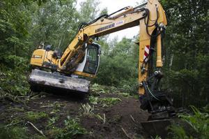Hans Borvall med grävskopa tog fighten mot jättebjörnlokorna.