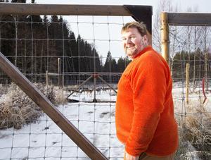 Karl-Bertil Johansson har ett 15-tal dovhjortar i ett hägn.