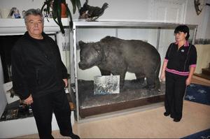 """Hanz och Aniko Jankovic, Stugun, har beslutat sig för att återlämna Ragundabjörnen till Ragunda kommun. """"Vi har fått nog, vi vill inte ha mer skit"""", säger de.  Foto: Ingvar Ericsson"""