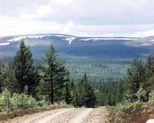 Fulufjällets nationalpark väster om Särna bildades 2002 och omfattar 385 kvadratkilometer och är den största utanför Norrbotten. Fulufjället erbjuder orörd vildmark, stora djur, ett rikt fågelliv och inte minst en häftig utsikt. Här finns även Sveriges högsta vattenfall, Njupeskär.