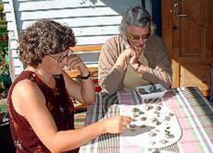 Foto: ULF GRANSTRÖM Avslöjande. Mängden fynd visar att här bodde folk. Arkeolog Elise Hovanta och Birgitta Stenberg studerar några av de flintabitar som Sten Stenberg hittat.
