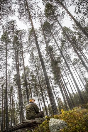 Mitt i reservatet Sörvallen-Mellanåsen. På pappret ser det ut som att Tommy Hegestrand betalade en krona för 4 700 hektar fjällnära skog. Det var bara ett sätt att bokföra värdet, säger han.
