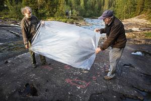 Johnny Persson och Curt Lofterud hjälper till att lyfta bort plasten som sedan ska skannas in, för att därefter skickas till Länsstyrelsen.