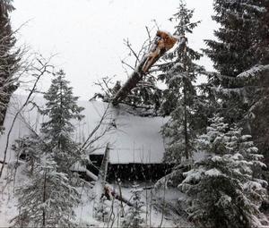 En stor gran rasade över Ingvar Kronblads gästhus i Tegefors natten mot lördagen.