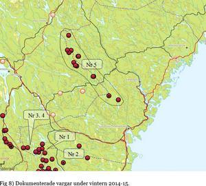 Kartan visar var det dokumenterades vargspår under vintern 2014-2015. Vareg 5 är Edselevargen. Observationerna i Medelpad är vargar som delas med Gävleborgs län och som ibland går in i Västernorrland.