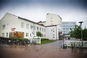 På Nyhamre skola jobbar rektorn närmare 50 timmar i veckan för att hinna med.