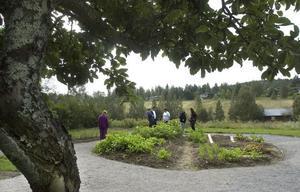 Deltagare från kommunens dagligverksamhet ges chansen att gå kurser i ämnet trädgård i ABF:s regi.