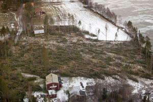 Vissa skogsfastigheter mellan Östersund och Bräcke har påverkats kraftigt av stormens härjningar.