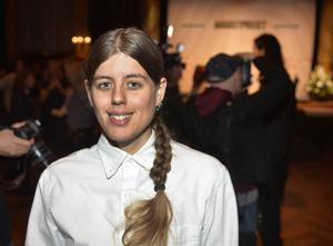 Hanna Gustavssons seriebok