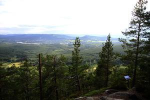 Utsikten från toppen åt Järvsö till.