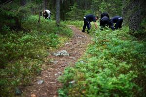 Handlingsplan. 2012 fanns 400 gästarbetare i Ljusnarsbergs kommun. Det blev en sommar med en debatt om främlingsfientlighet.