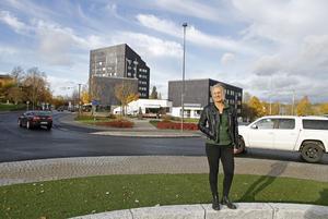 Konstnären Ann Ahlbom Sundqvist ska göra en 3,5 meter hög skulptur i cortenstål som ska stå i Aaltorondellen.