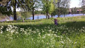 Glädjeskutt för att sommaren äntligen är här. Foto: Johanna Lundgren.
