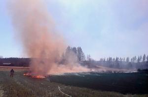 Det är stor risk för gräsbränder nu och räddningstjänsten i Ljusdal vill uppmana de kommuninvånare som ändå väljer att elda trädgårdsavfall och fjolårsgräs att vara försiktiga.