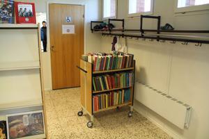 Bibliotekets handikapptoalett kan vara svår att nå, eftersom det står bokvagnar i vägen, konstaterar Margareta B Kjellin.