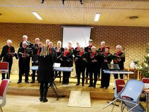 PRO Bjästas egen kör, New Old Singers, bjöd på härliga julsånger.Foto: Anders Nordin.