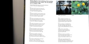 Visan som finns upptecknad i Såå utanför Åre  handlar om en drunkning i Kölsjön 1886, bara tre veckor före Långåmordet. Kan den ha samma författare?