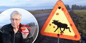 Kjell Örjes tror att en blinkande lampa kan vara lösningen när det ska varnas för vilt längs vägarna.