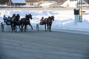 Ulf Ohlsson och hästen Global Teardrop kom starkt utvändigt och spurtade hem segern.