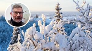 Olov Söderström, vd för Norrskog.