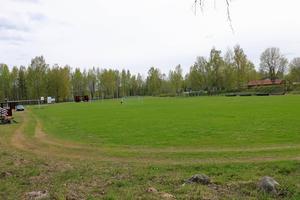 Naturgräset på Hammarby IP är fortfarande en fröjd för ögat. Men skötseln av löparbanorna runt planen är eftersatt.