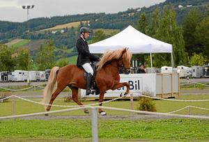 Pierre Sandsten Hoyos tävlade i nordiska mästerskapen år 2016 med hästen Geisli.