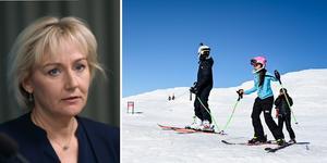 Helene Hellmark Knutsson är vice ordförande i Riksdagens näringsutskott. Foto: Pontus Lundahl, Fredrik Sandberg/TT