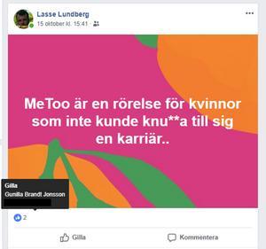 Ett av de första inläggen som togs upp i granskningen var detta som Lasse Lundberg skrev. Lundberg är ledamot i kommunfullmäktige och ersättare i Miljö- och samhällsbyggnadsnämnden.