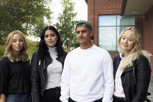 Jennifer Wigers, Ster Arafat, Siamand Hajo och Linnea Hammargren går på Hälsingegymnasiet i Bollnäs och ska driva Studentboxen UF.