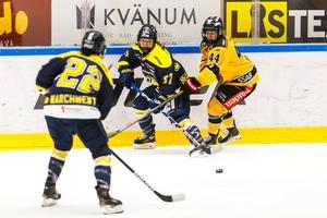 HV-damerna föll tungt mot Luleå. Foto: Axel Boberg/Bildbyrån.