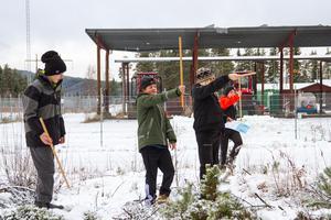 Med hjälp av en träpinne och sina egna steg kan eleverna från Mo skola räkna ut hur högt ett träd är.