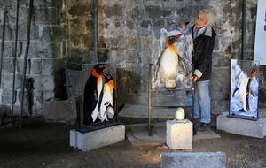 Solveig Bohm Dahlberg ordnar med pingvinfamiljen i glasfusing inför sin retrospektiva utställning i Movikens masugn.