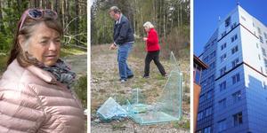 Berit Larsson, Ivar Johansson  och Marita Sundkvist är några som har reagerat på skräpet i naturen.  NP har tidigare skrivit om skräpmassor i Fullbro och längs väg 73.