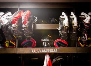 Aaron Palushaj räknar med att återvända till Örebro Hockeys omklädningsrum för en andra säsong i klubben. Arkivfoto: Johan Bernström/Bildbyrån