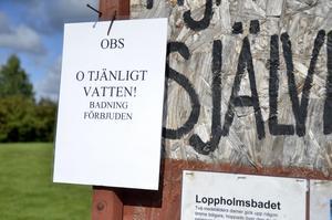 Badförbud. En skylt på anslagstavlan talar om att vattnet vid Loppholmen är fullt av bakterier och olämpligt att bada i. Bild: Ulrika Stoetzer