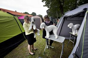 Patricia Eriksson, Eva Byberg, Alfie, Saja och Kotte.